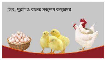 বরিশালে ডিম, মুরগি ও বাচ্চার আজকের (২ অক্টোবর) বাজারদর